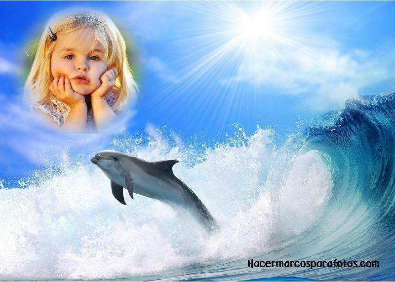Marco de delf n para decorar fotos marcos para fotos gratis - Cuadros para decorar fotos gratis ...