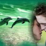 Marco para fotos con delfines